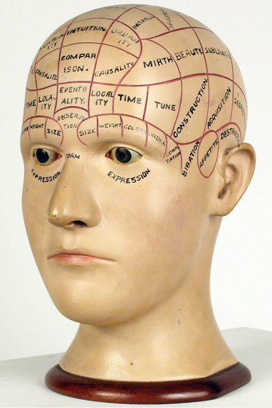 phrenology_head.jpg